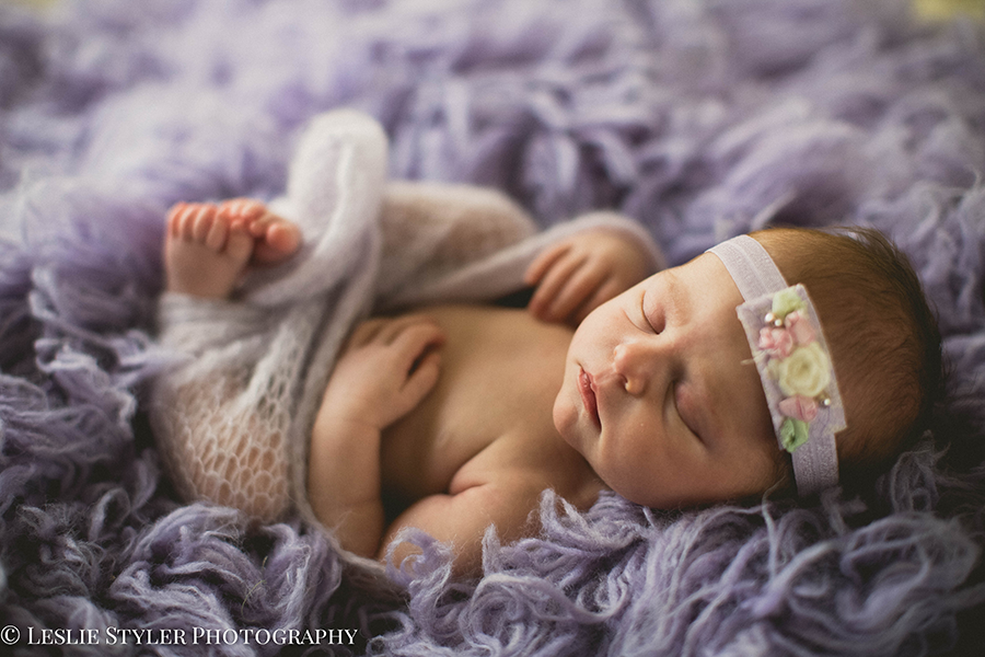phoenix newborn photographer 4